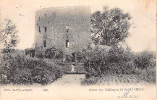 Ansichtkaart Sassenheim Ruïne van Kasteel Teijlingen 1905 HC3339