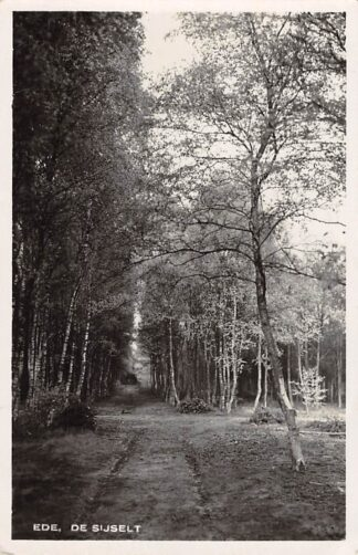 Ansichtkaart Ede De Sijselt 1936 HC3409