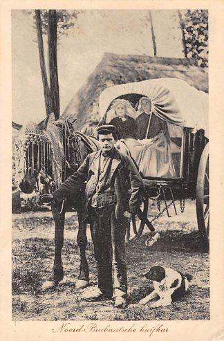 Ansichtkaart Noord-Brabant Dorpsleven Huifkar Paard en wagen 1918 Sint-Oedenrode Klederdracht HC3423