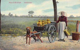 Ansichtkaart Noord-Brabant Dorpsleven Melkmeisje met hondenkar Klederdracht HC3485