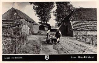 Ansichtkaart Noord-Brabant Dorpsleven Mooi Nederland Brabantse Boerderij 1950 HC3522