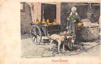 Ansichtkaart Noord-Brabant Dorpsleven Driedubbele hondenkar voor 1906 Klederdracht HC3573