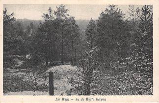 Ansichtkaart De Wijk Drenthe In de Witte Bergen 1930 HC3645