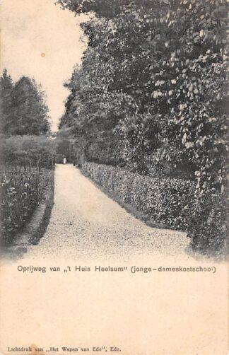 """Ansichtkaart Heelsum Oprijweg van """"t Huis van Heelsum (jonge-dameskostschool) HC3887"""