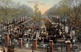 Ansichtkaart Groningen Nieuwe Veemarkt Koeien Markt 1905 HC3915