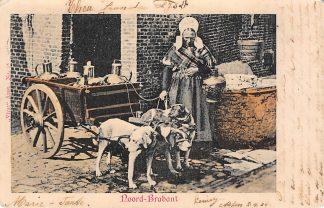 Ansichtkaart Noord-Brabant Dorpsleven Hondenkar met drie honden 1904 Vivat no. 28 Klederdracht HC4098