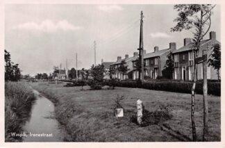 Ansichtkaart Waspik Irenestraat 1955 HC4251