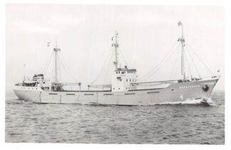 Ansichtkaart Delfzijl m.v. Nassauborg E. Wagenborg's Scheepvaart & Expeditiebedrijf Scheepvaart Schepen HC4344