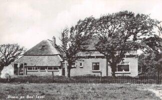 Ansichtkaart Texel Bloem en Bos HC4399