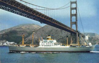Ansichtkaart Rotterdam s.s. Dinteldyk in Noord-Amerika San Francisco ? Schepen Scheepvaart HC4570