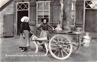 Ansichtkaart Noord-Brabant Dorpsleven Terug van 't melken Hondenkar A. Smits Den Dungen HC4627