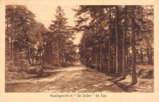 Ansichtkaart Epe Boschgezicht in De Dellen 1943 HC4662