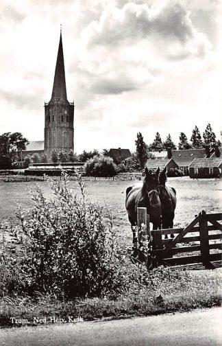 Ansichtkaart Tzum bij Franeker Ned. Hervormde Kerk Paard HC4670
