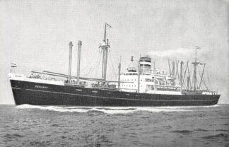 Ansichtkaart Holland America Line m.v. Schiedyk Scheepvaart Schepen Rotterdam HC4780