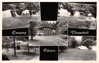 Ansichtkaart Odoorn Groeten uit Camping Vlintenholt 1967 HC4836