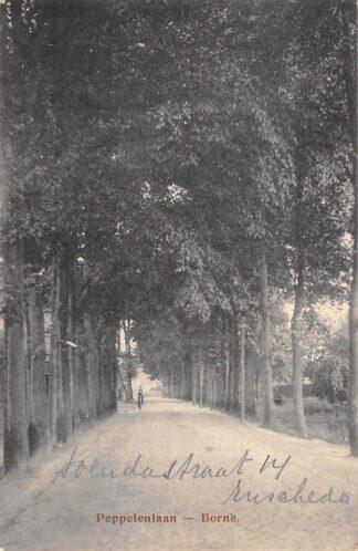 Ansichtkaart Borne Peppelenlaan 1921 HC4904
