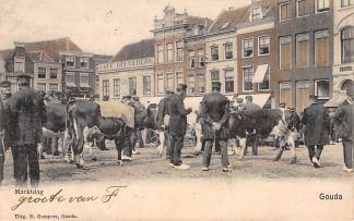 Ansichtkaart Gouda Markt dag Veemarkt Koeienmarkt Gompers in kleur HC4943