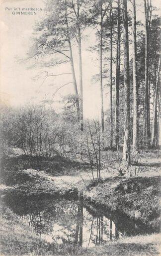 Ansichtkaart Ginneken bij Breda Put in 't Mastbosch 1910 HC4993