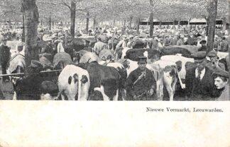 Ansichtkaart Leeuwarden Nieuwe Veemarkt 1907 Koeien Markt HC5174