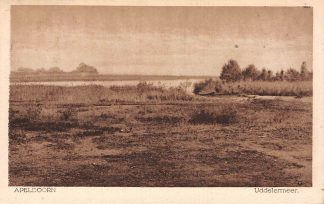 Ansichtkaart Apeldoorn Uddelermeer Uddel 1925 HC5361