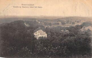 Ansichtkaart Bloemendaal Gezicht op Haarlem vanaf het Kopje 1921 HC5439