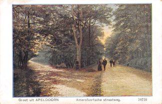 Ansichtkaart Apeldoorn Groet uit Amersfoortsche Straatweg 1917 HC5498