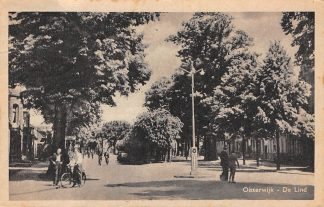 Ansichtkaart Oisterwijk De Lind 1949 HC5701