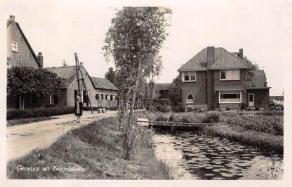 Ansichtkaart Noordeloos Groeten uit Dorpsgezicht 1950 HC5821