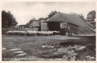 Ansichtkaart Hulshorst Post Nunspeet Kamphuis De Dageraad in den vroege morgen Kudde schapen en herder bij de stal HC5882