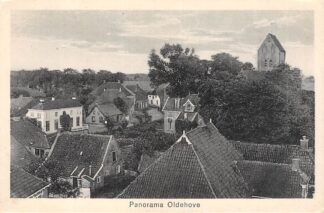 Ansichtkaart Oldehove Panorama Zuidhorn Groningen HC6048