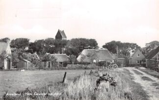 Ansichtkaart Ameland Nes Gezicht op dorp 1964 HC6087