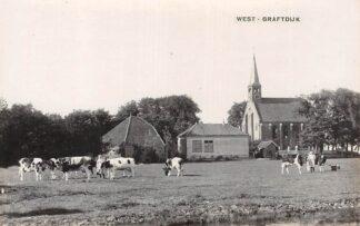 Ansichtkaart West-Graftdijk Fotokaart Ned. Hervormde Kerk met koeien in de wei Alkmaar Schermer HC6249