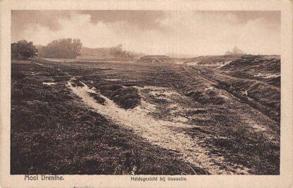 Ansichtkaart Gasselte Heidegezicht Mooi Drenthe HC6264