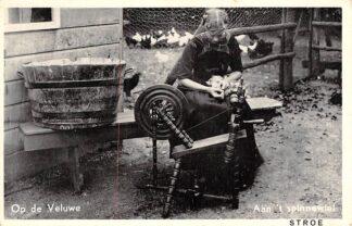 Ansichtkaart Stroe Aan 't Spinnewiel Op de Veluwe Klederdracht Dieren HC6373