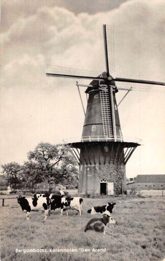 Ansichtkaart Bergambacht Korenmolen Den Arend Molen 1961 HC6469