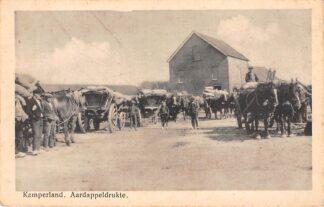 Ansichtkaart Kamperland Aardappeldrukte Boeren met paard en wagen Noord-Beveland HC6552