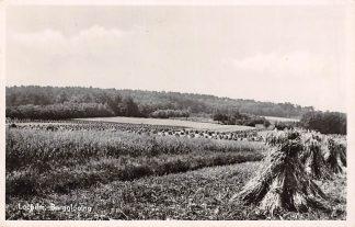 Ansichtkaart Lochem Bergglooiing 1951 HC6650