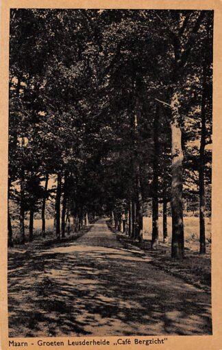 Ansichtkaart Maarn Groeten Leusderheide Café Bergzicht HC6655