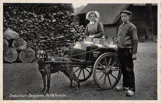 Ansichtkaart Noord-Brabant Dorpsleven Boxtel De Melkventer Hondenkar Klederdracht HC6711