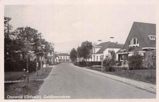 Ansichtkaart Oostwold Oldambt Goldhoornstraat 1949 HC7134