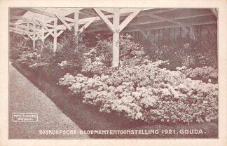 Ansichtkaart Gouda Boskoopsche Bloemententoonstelling in veemarkt hal 1921 Boskoop Tukker HC7276