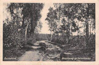Ansichtkaart Bennekom Boschweg op Seltenkamp 1922 HC7295