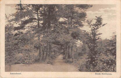 Ansichtkaart Amersfoort Bosch Birkhoven 1915 HC7606