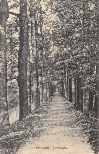 Ansichtkaart Leersum Lievendael HC7814