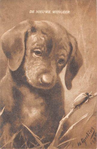 Ansichtkaart Fantasie De Nieuwe wijsgeer Hond beziet kever Dieren Illustrator H. Sparling 1910 HC8093