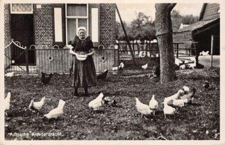 Ansichtkaart Axel Axelsche Kleederdracht Boerin in klederdracht Kippen voeren 1937 Zeeland HC8129