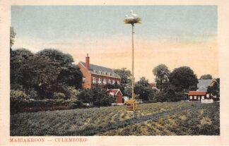 Ansichtkaart Culemborg Mariakroon Nest ooievaars Dieren 1919 HC8181