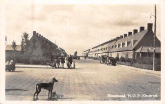 Ansichtkaart Emmeloord N.O.P. Rietstraat Auto Hond Flevoland HC8228
