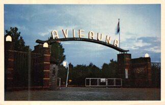Ansichtkaart Alphen aan den Rijn Ingang Vogelpark Avifauna Zoo 1954 HC8258