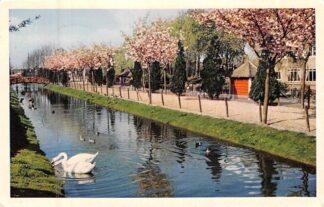 Ansichtkaart Alphen aan den Rijn Vogelpark Avifauna Zoo Dieren 1961 HC8259